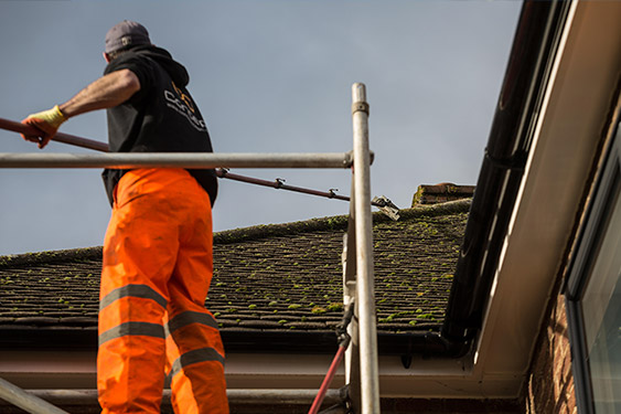 roof cleaning service